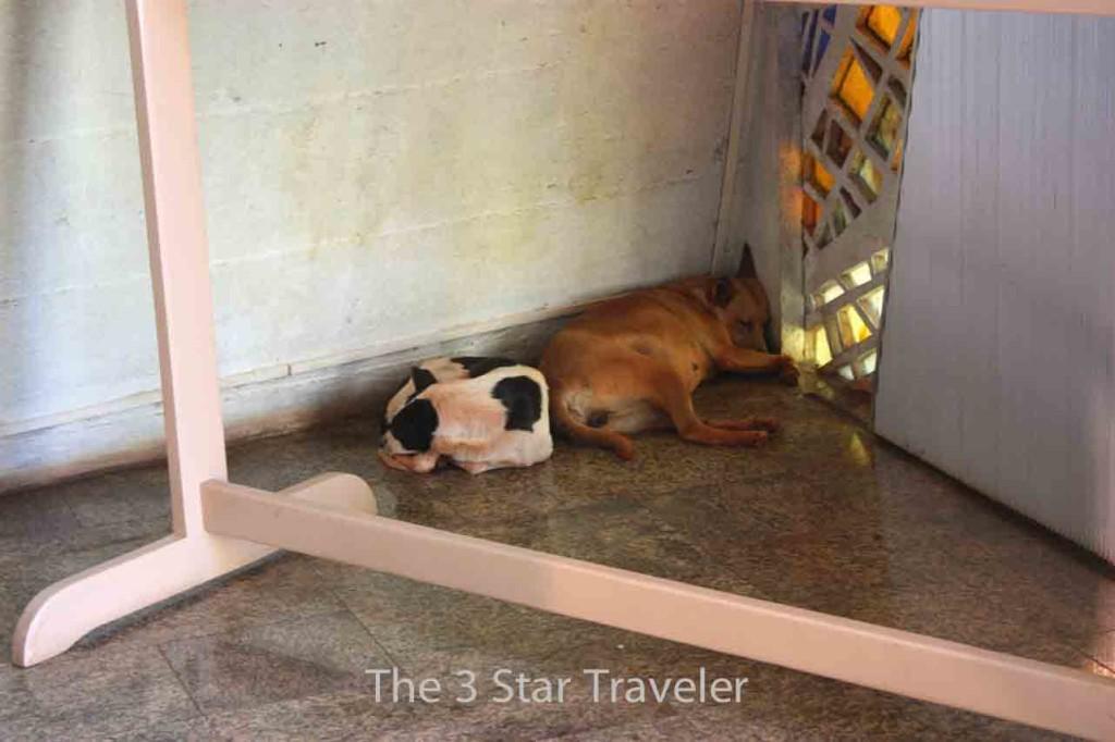 Maringa - PR, Brasil   The 3 Star Traveler