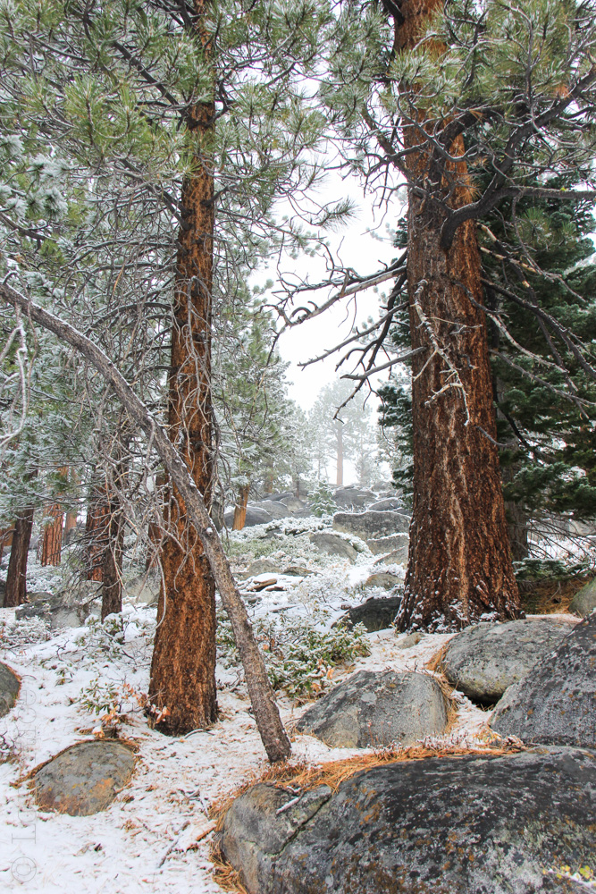 October Snow Lake Tahoe | The 3 Star Traveler