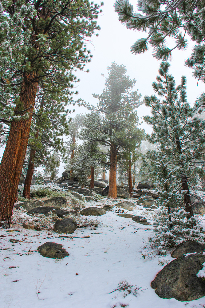 October Snow South Lake Tahoe | The 3 Star Traveler