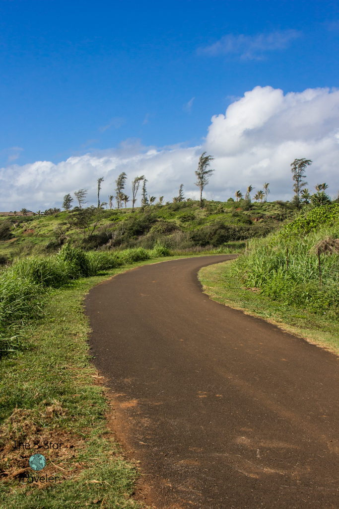 Along the East Shore Bike Trail in Kauai | 5 Ways to Stay Active in Kauai | The 3 Star Traveler