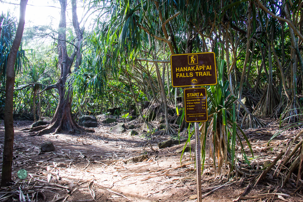 The start of the Hanakapi'ai Falls Trail from the Kalalau Trail in Kauai | 5 Ways to Stay Active in Kauai | The 3 Star Traveler