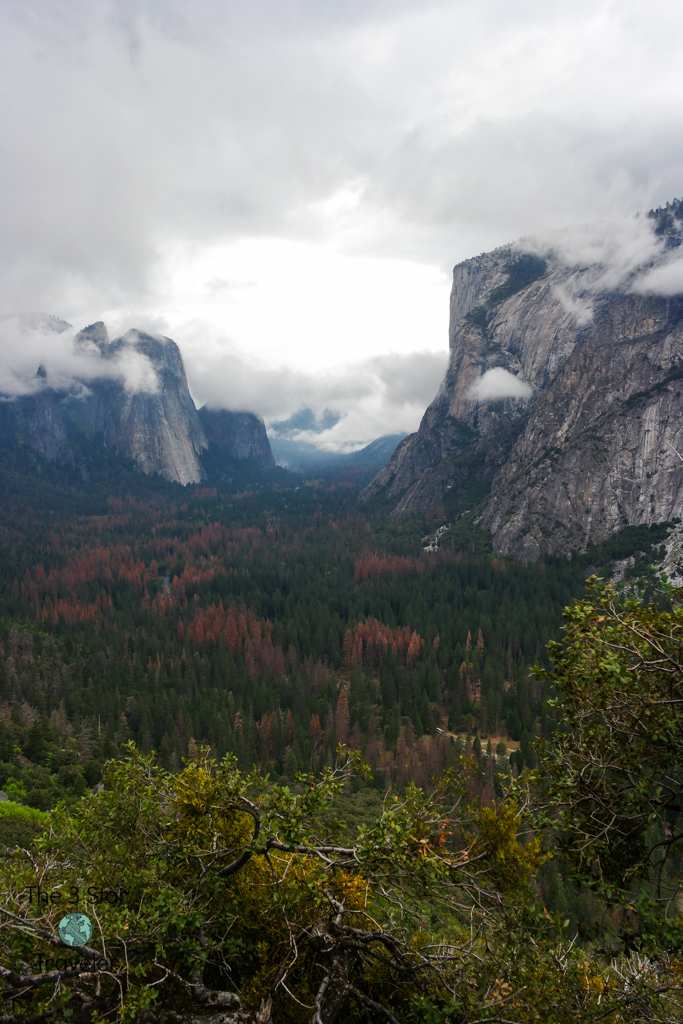 View from Four Mile Trail | Camping and Hiking in Yosemite in Pictures | The3StarTraveler.com
